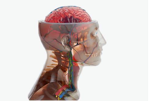 3d打印的应用可以复制人体解剖学的几乎任何部分